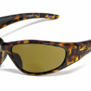 473-BF in Gloss Tortoise Shell (BF/P)