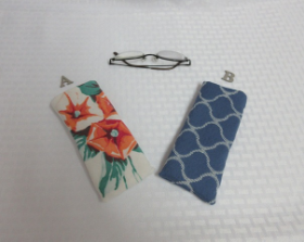 Glasses Case - Cloth Small