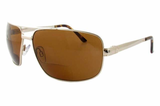 2fb1ddc387a Polarized Bifocal Sunglasses  476-BF in Gold